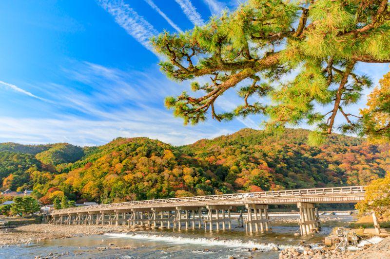 秋天的渡月橋