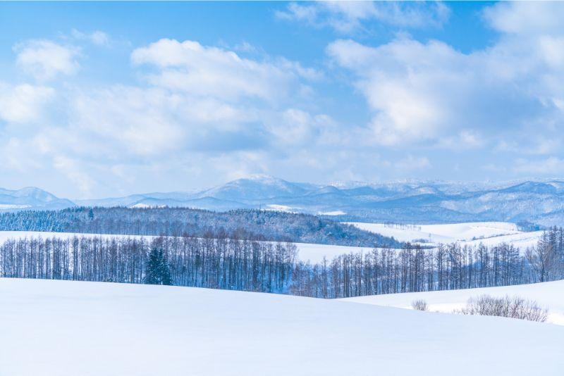 美瑛之丘、白雪覆蓋的大地