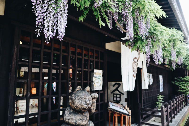 夏天的高山老街開滿紫藤花
