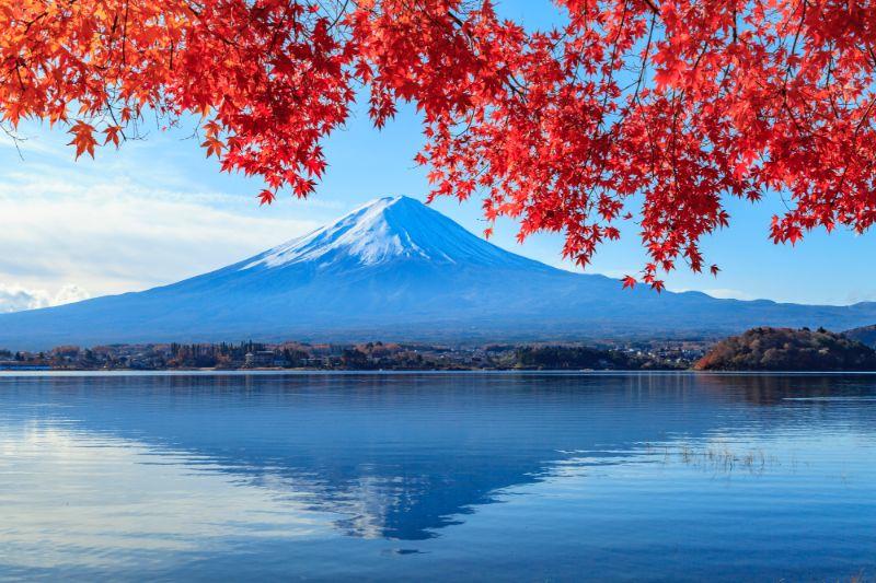 富士山、河口湖、楓葉