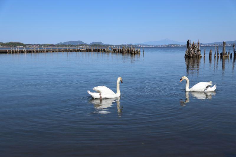 宍道湖溫泉