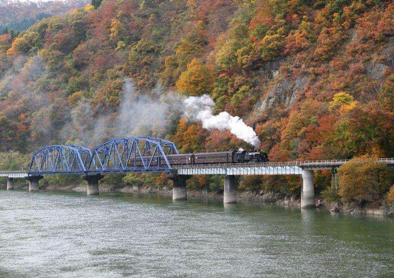 只見線SL列車和紅葉