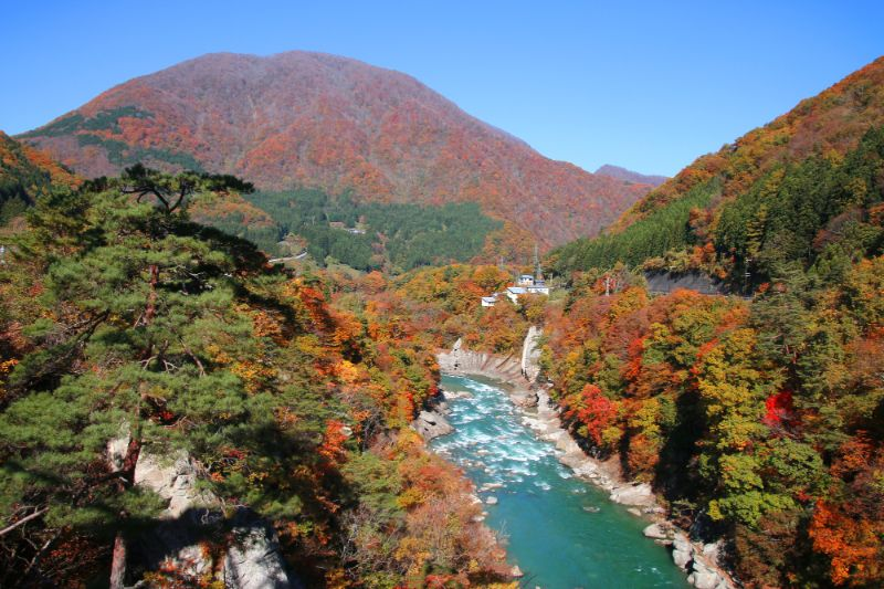 秋天的阿賀川、小野岳/位於會津下鄉町