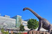 JR「福井站」及恐龍像