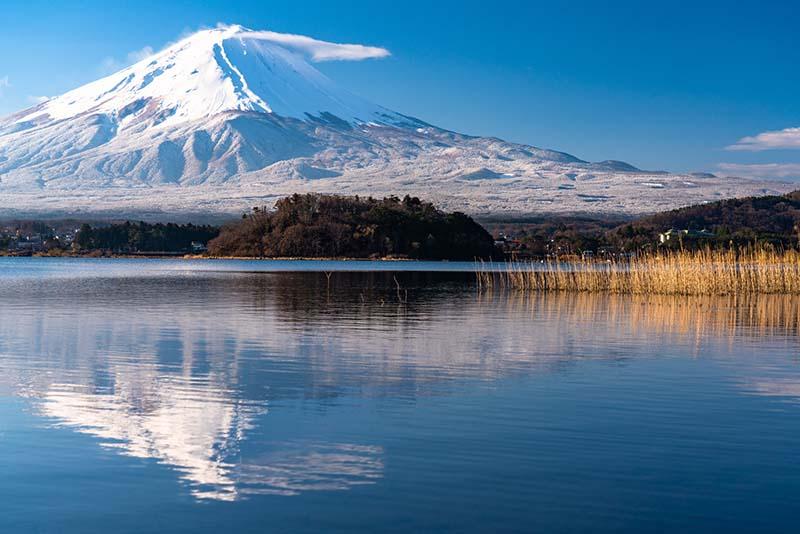 「JR東京廣域周遊券」關東近郊旅遊提案Day2:悠遊河口湖自然之旅