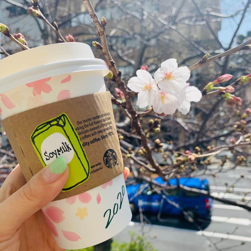 日本春天櫻花
