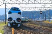 熊貓黑潮號列車