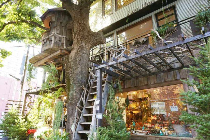 樹屋咖啡Les Grands Arbres