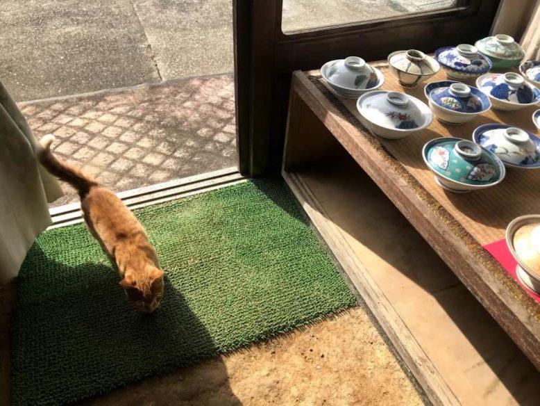 有田燒和貓咪
