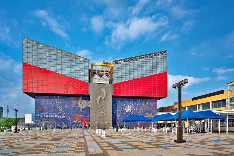 海豹企鵝超可愛!大阪「海遊館」門票、看點、周邊美食全攻略